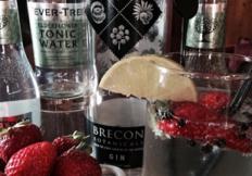 Brecon Gin sml